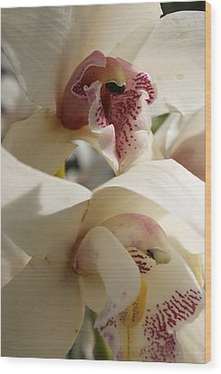 Orchids Wood Print by Tina McKay-Brown