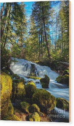 Pearsoney Falls Wood Print by Jim Adams