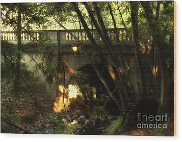 Pedestrian Bridge And Strawberry Creek  . 7d10132 Wood Print by Wingsdomain Art and Photography