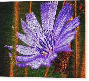 Purple Flower Wood Print by Andre Faubert