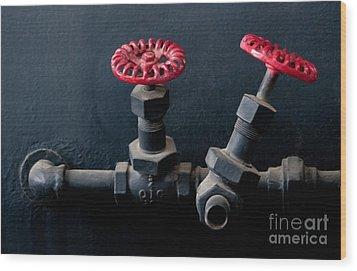 2 Red Valves Wood Print by Dan Holm