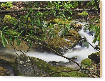 Rhododendron And Waterfall Wood Print by Thomas R Fletcher