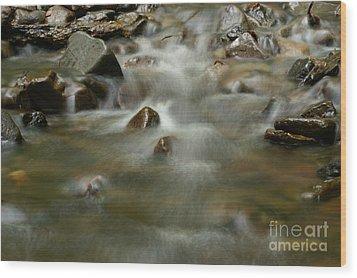 River Wood Print by Odon Czintos