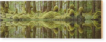 Swamp Wood Print by David Nunuk
