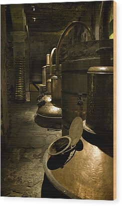 Tequilera No. 1 Wood Print by Lynn Palmer