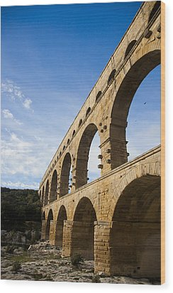 The Famous Pont Du Gare In France Wood Print by Taylor S. Kennedy