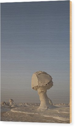 The Strange Eroded Formations Wood Print by Taylor S. Kennedy