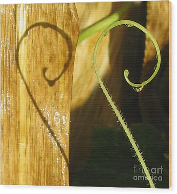 Unmistaken Wood Print by Tina Marie