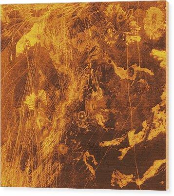 Venus, Synthetic Aperture Radar Map Wood Print by Detlev Van Ravenswaay