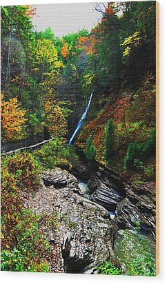 Watkins Glen State Park New York   Wood Print by Puzzles Shum