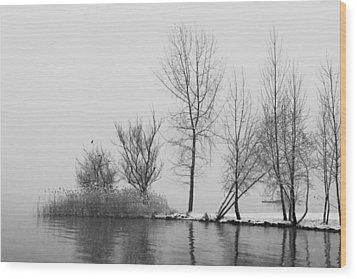 Wintertrees Wood Print by Joana Kruse