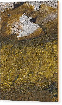 Wood Print featuring the photograph Yellowstone Color by J L Woody Wooden