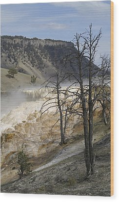 Yellowstone Nat'l Park Wood Print