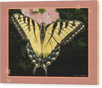 Butterfly Collection Wood Print by Debra     Vatalaro