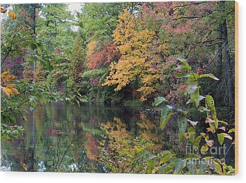 Sugar Ridge State Fish And Wildlife Area Wood Print by Jack R Brock