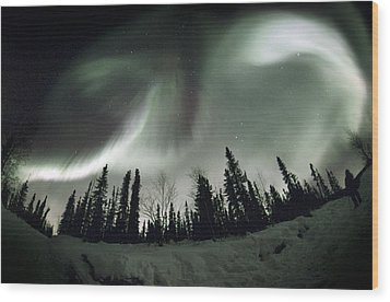 Aurora Borealis Wood Print by Chris Madeley