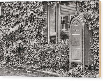 22747 Bw Wood Print by JC Findley