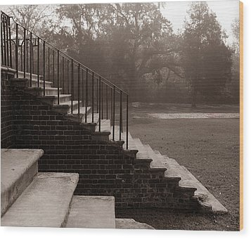 28 Up And Down Steps Wood Print by Jan W Faul