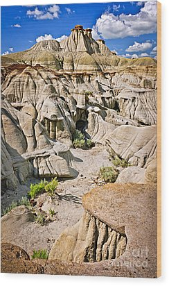 Badlands In Alberta Wood Print by Elena Elisseeva