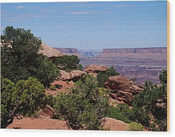 By The Canyon Wood Print by Dany Lison