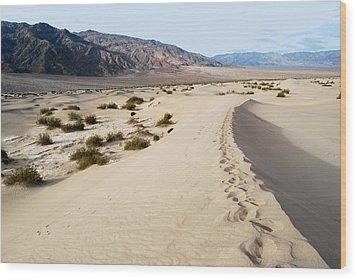 Death Valley National Park Mesquite Flat Sand Dunes Wood Print by Eva Kaufman