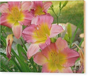3 Lillies Wood Print