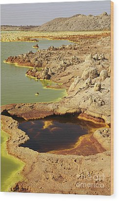 Potassium Salt Deposits, Dallol Wood Print by Richard Roscoe