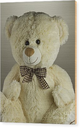 Teddy Bear Wood Print by Blink Images