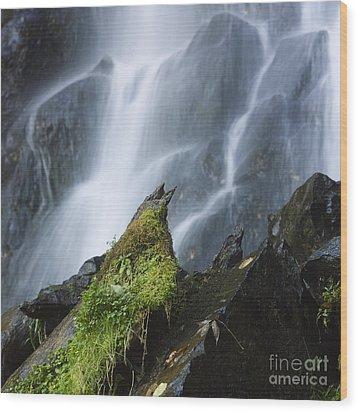 Waterfall Of Vaucoux. Puy De Dome. Auvergne. France Wood Print by Bernard Jaubert