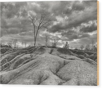 Badlands Wood Print by Oleksiy Maksymenko