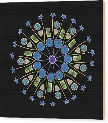 Diatom Assortment, Sems Wood Print by Steve Gschmeissner