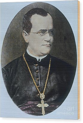 Gregor Mendel, Father Of Genetics Wood Print by Science Source