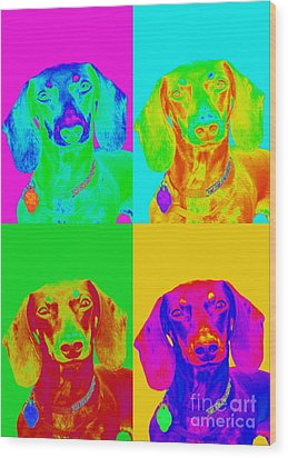Pop Art Dachshund Wood Print by Renae Laughner
