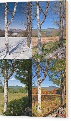 4 Seasons Chocurua Vertical Wood Print