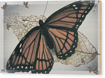 Butterfly Design Collection Wood Print by Debra     Vatalaro