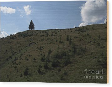 Landscape Wood Print by Odon Czintos