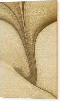 Magic Background Wood Print by Odon Czintos