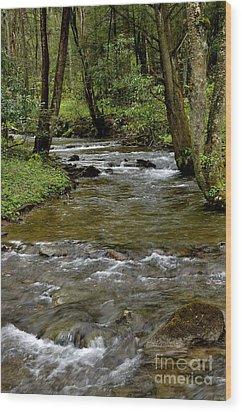 Monongahela National Forest Wood Print by Thomas R Fletcher