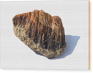 Rock From Meteorite Impact Crater Wood Print by Detlev Van Ravenswaay