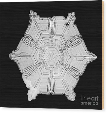 Snowflake Wood Print by Science Source