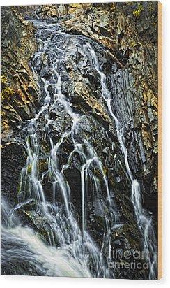 Waterfall Wood Print by Elena Elisseeva