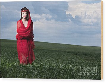 Woman In Red Series Wood Print by Cindy Singleton