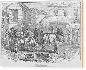 Arkansas: Hot Springs, 1878 Wood Print by Granger