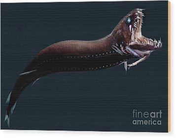 Deep-sea Dragonfish Wood Print by Dant� Fenolio