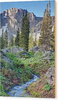 Wasatch Mountains Utah Wood Print by Utah Images