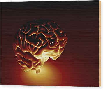 Human Brain, Artwork Wood Print by Pasieka