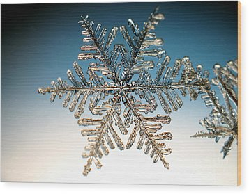 Snowflake Wood Print by Ted Kinsman
