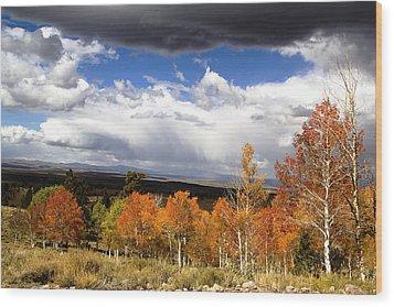Rocky Mountain Fall Wood Print by Mark Smith