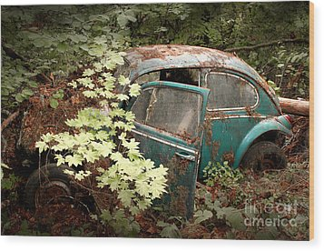 A '65 Bug In The Overgrowth Wood Print by Michael David Sorensen