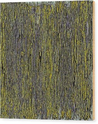 A Beautiful Dream IIi Wood Print by James Mancini Heath